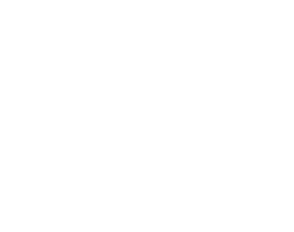 Boom Bap Nation